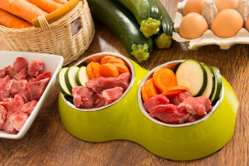 Raw diet consisting of raw meat and vegetables